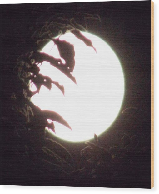 Moonshine 11 Evsion Pt2 Wood Print
