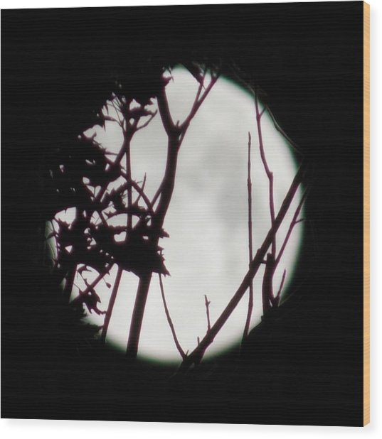 Moonshine 2 Wood Print