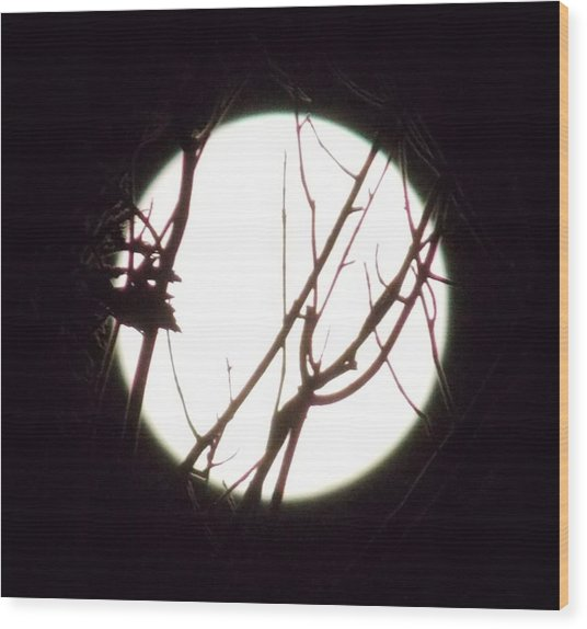 Moonshine 4 Wood Print