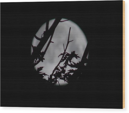 Moonshine 6 Wood Print