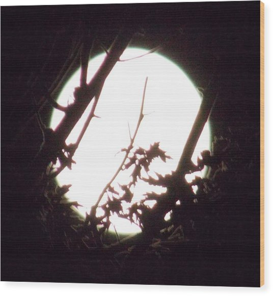 Moonshine 7 Wood Print