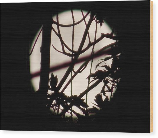 Moonshine 8 Wood Print