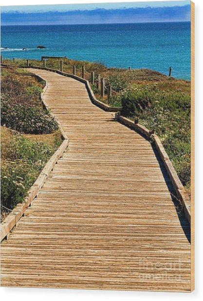 Moonstone Beach Park By Diana Sainz Wood Print