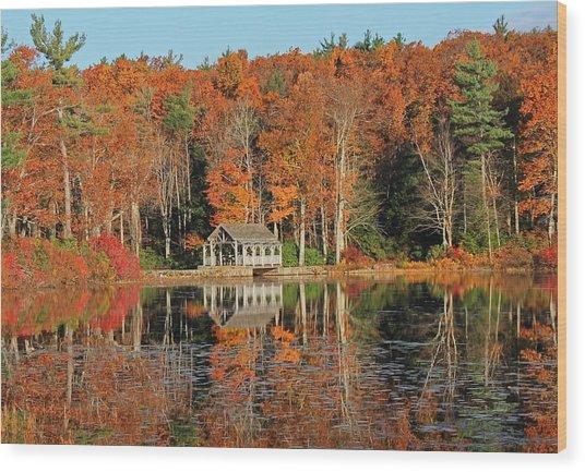 Moore State Park Autumn I Wood Print