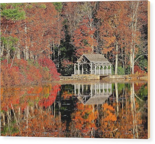 Moore State Park Autumn II Wood Print