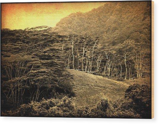 Moorea Landscape Wood Print