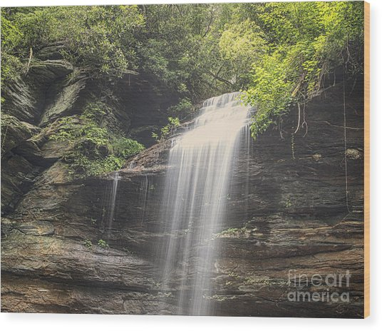 Moore's Cove Falls Wood Print