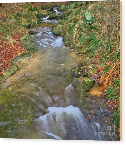 Moorland Stream Wood Print