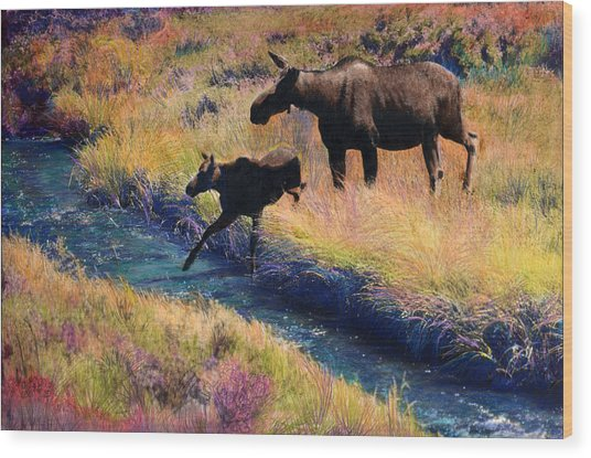 Moose And Calf Wood Print