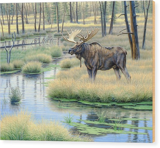 Moose Country Wood Print