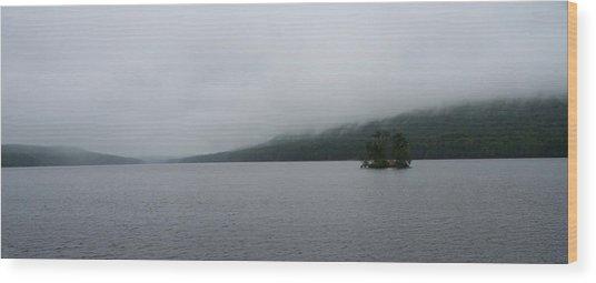 Moose Island Maine Wood Print