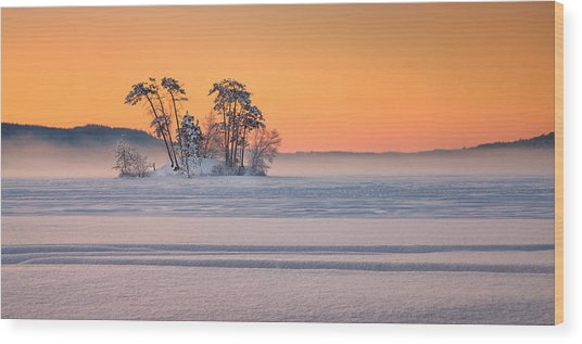 Moose Pond Winter Sunrise Wood Print