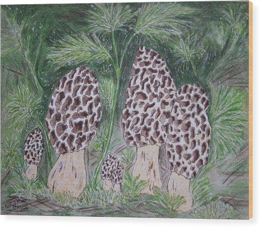 Morel Mushrooms Wood Print