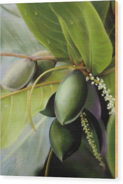 Morning Almonds Pastel Wood Print
