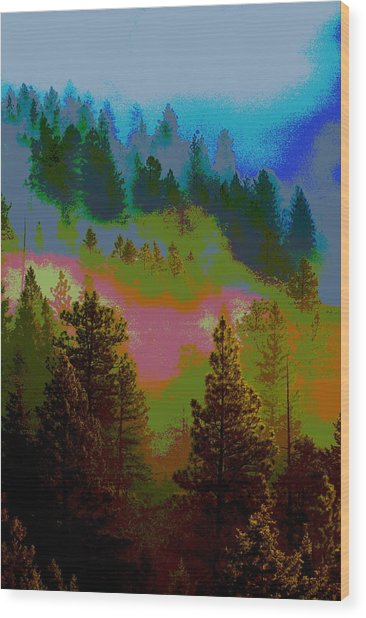 Morning Arrives In The Pacific Northwest Wood Print