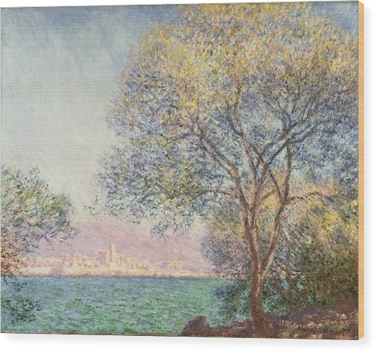 Morning At Antibes Wood Print
