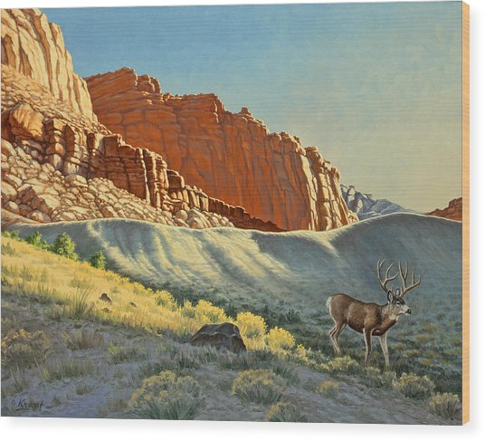 Morning At Capitol Reef Wood Print