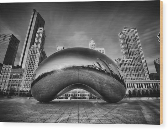 Morning Bean In Black And White Wood Print