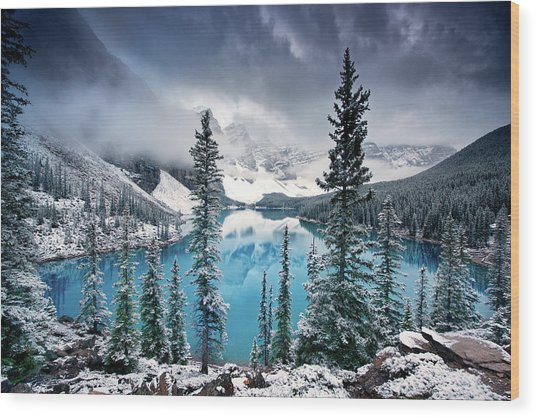 Morning Blues Wood Print by Trevor Cole