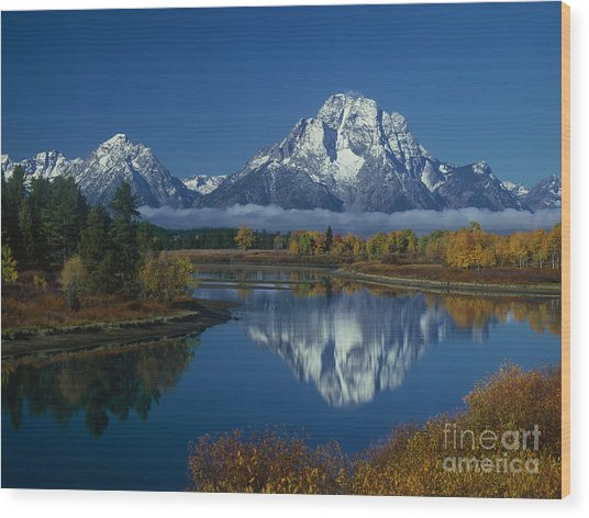 Morning Cloud Layer Oxbow Bend In Fall Grand Tetons National Park Wyoming Wood Print