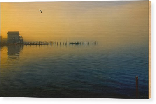 Morning Comes On The Bay Wood Print
