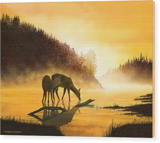 Morning Drink Wood Print