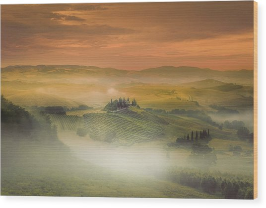 Morning Fog ... Wood Print