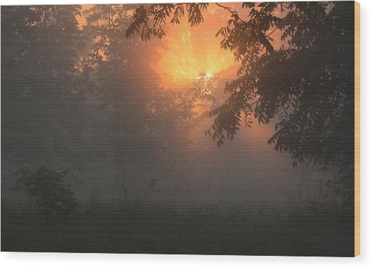 Morning Fog Wood Print