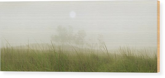 Morning Fog On The Dunes Wood Print