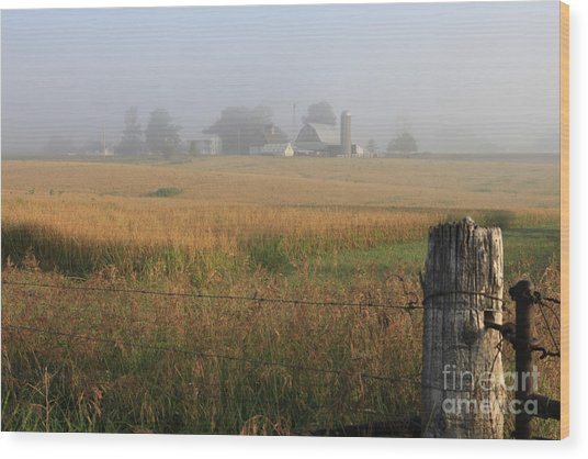 Morning Gate Wood Print