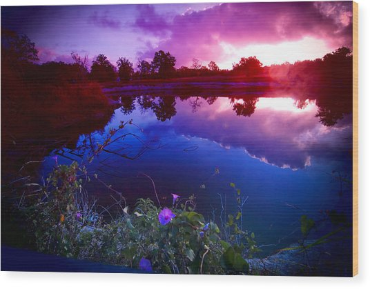Morning Glory Sky Wood Print