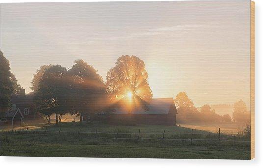 Morning Has Broken Wood Print