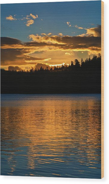 Wood Print featuring the photograph Morning Has Broken by Sherri Meyer