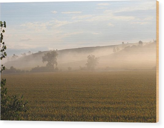 Morning In Iowa Wood Print by Angie Phillips