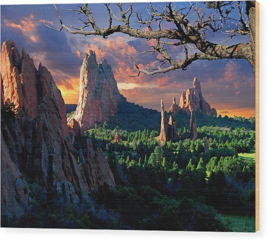 Morning Light At The Garden Of The Gods Wood Print