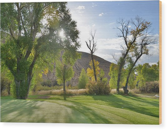 Morning Light At The Rolling Green Cc Wood Print