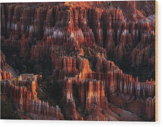 Morning Light On Hoodoos Wood Print