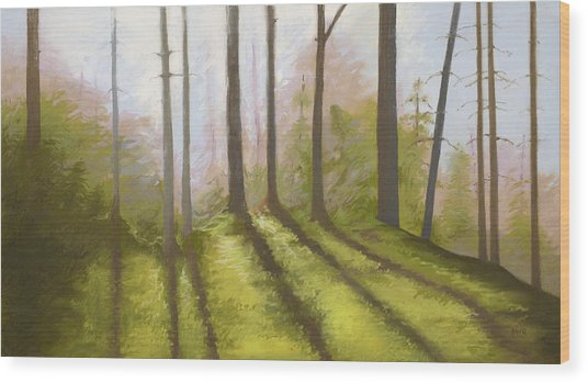 Morning Light On The Ledge Wood Print by Bruce Richardson