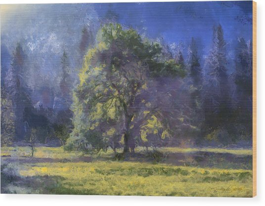 morning light Yosemite Valley Wood Print