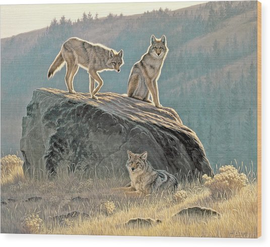 Morning Lookouts Wood Print