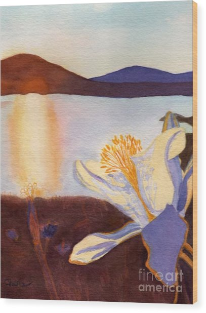 Morning Mesa Columbine Wood Print by Vikki Wicks
