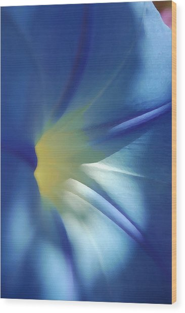 Morning Of Glory Wood Print