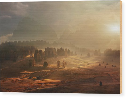 Morning On Alpine Meadow Wood Print