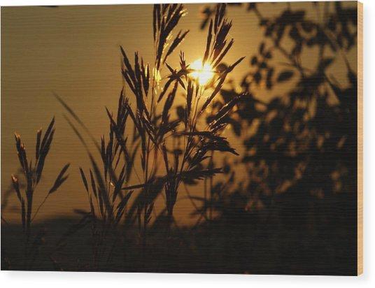 Morning On Bisbee Mountain Wood Print