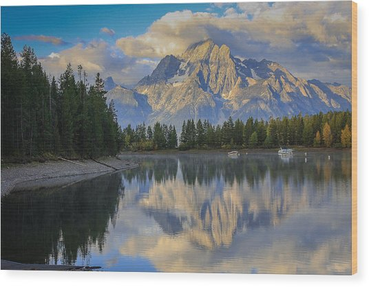 Morning On Colter Bay Wood Print by Michael Schwartz