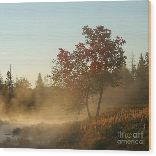 Morning On Middle River Wood Print