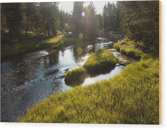 Morning On The Firehole Wood Print