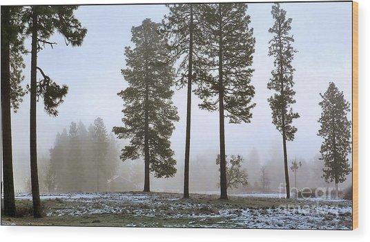 Morning Rime Wood Print