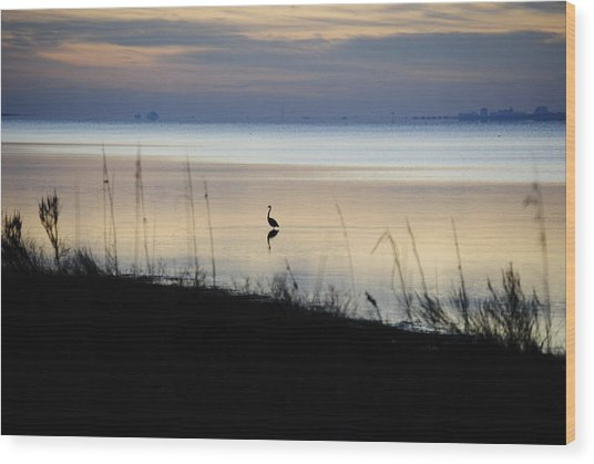Morning Solitude Wood Print by Michele Kaiser