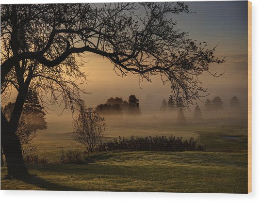 Morning Valley Fog Wood Print by Don Powers